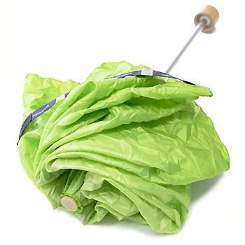 Vegetabrella.png